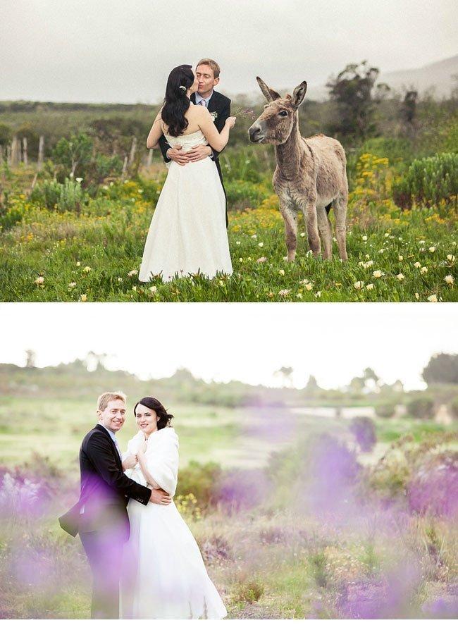 aletta14 real wedding