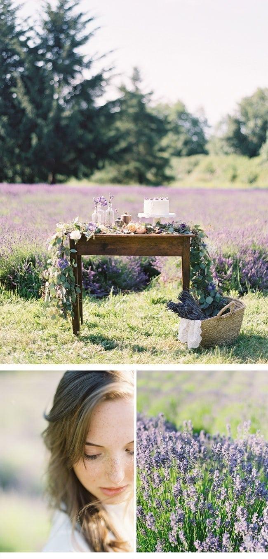 lavendershoot6
