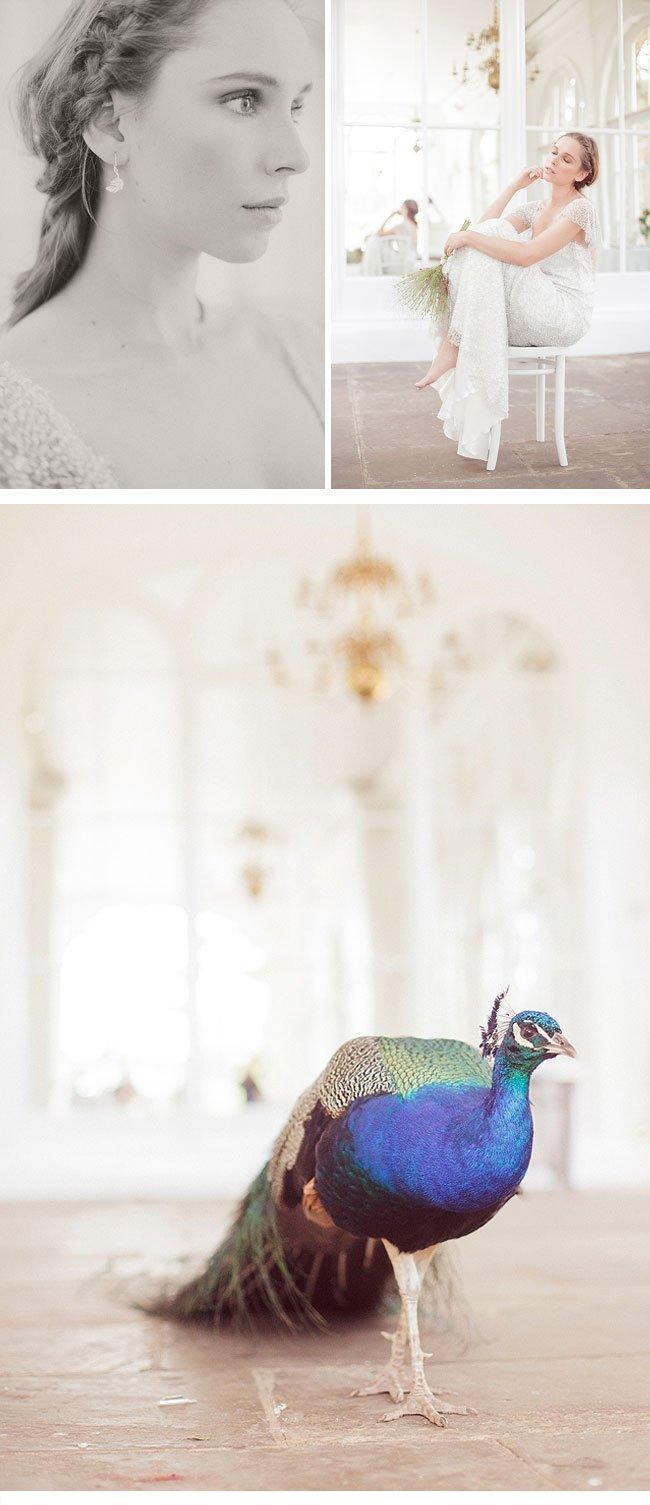 claire pettibone11b-orangerie styled shoot