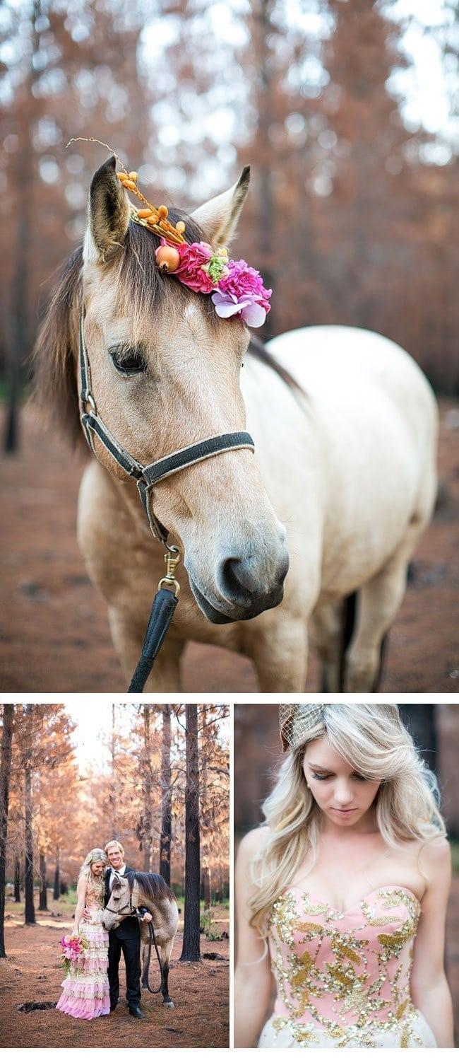 gold-shooting11-hochzeit mit pferd