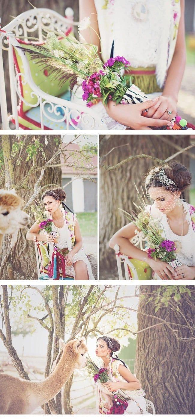alpaca9-styled shoot