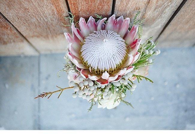 marene jaco hochzeit suedafrika wedding southafrica 0031