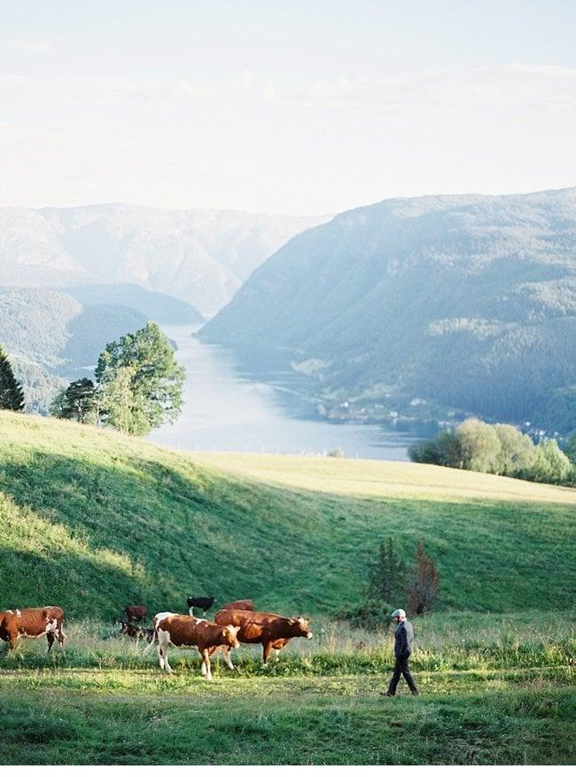 nina wes-hochzeit in norwegen norwegian vow 0010