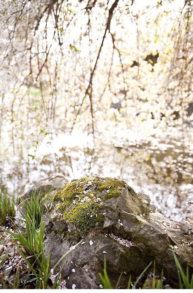 patricia vincent spring bridal 004a