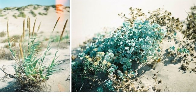 ramon herrerias brautkleider kollektion2014 35