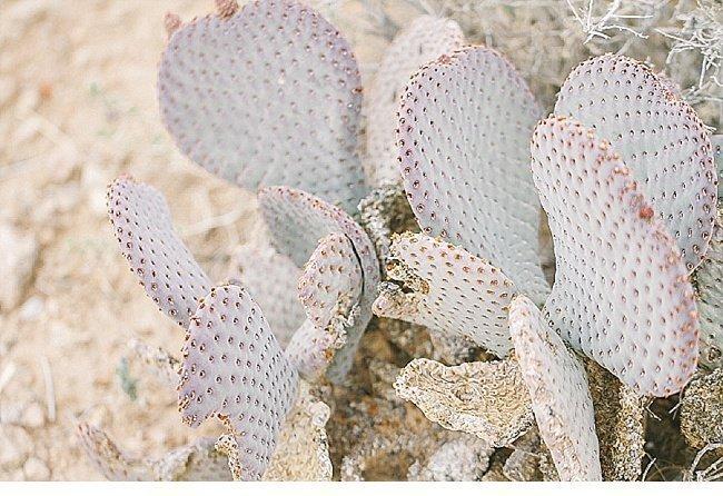 desert-shoot-wuestenshooting 0008