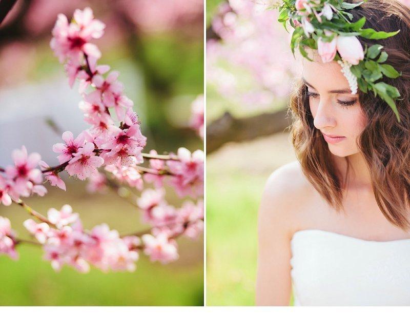 blooming peach tree shoot 0024