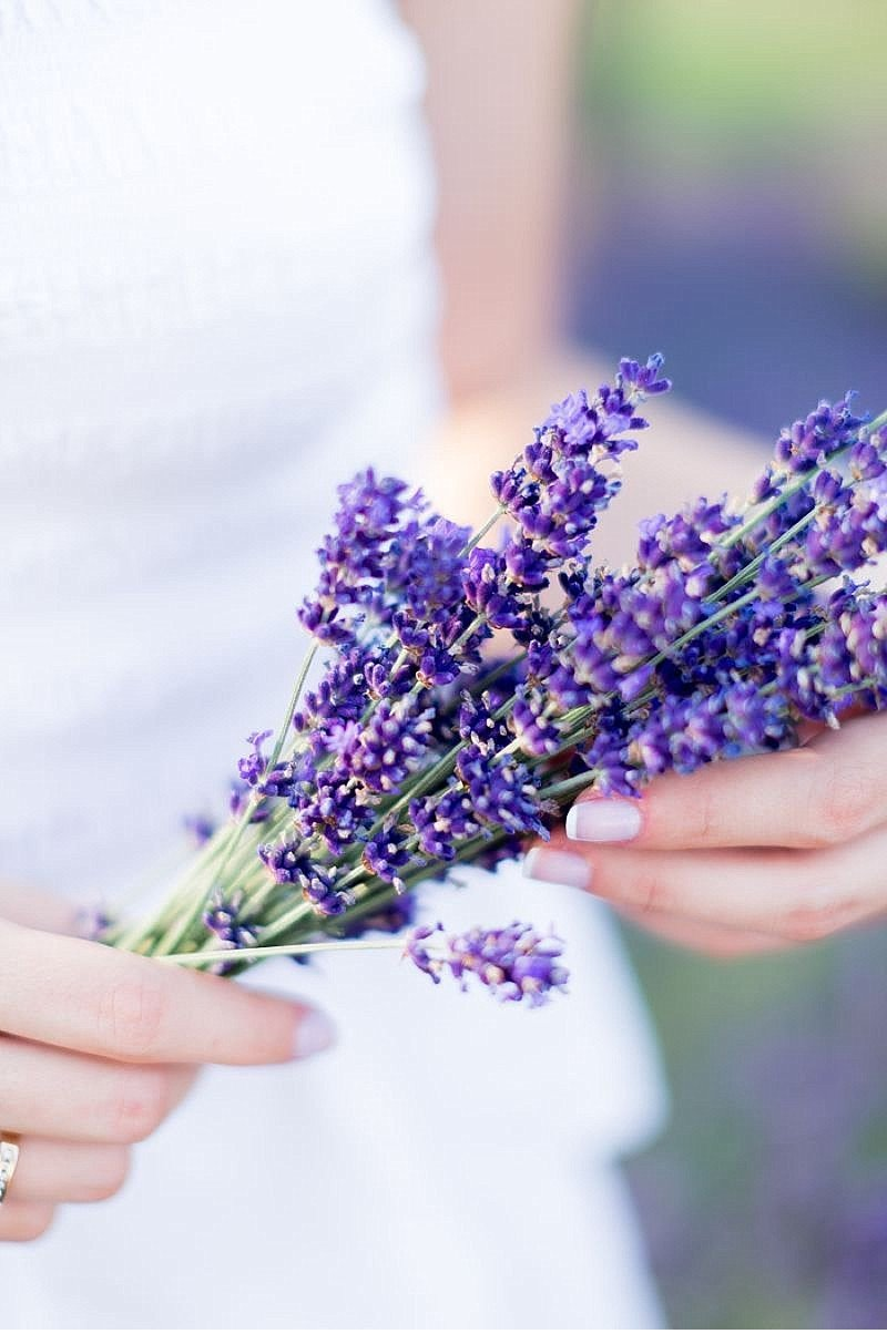 Cansu Onur engagement Lavendelfeld 0004