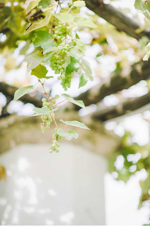 moda e arte bridal boudoir 0015