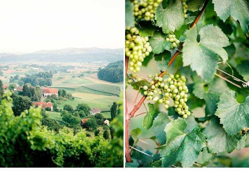 sabi-daniel-gartenhochzeit-steiermark_0012