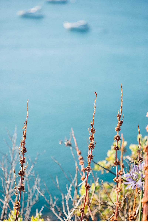 ana-daniel-elopement-neuseeland_0024