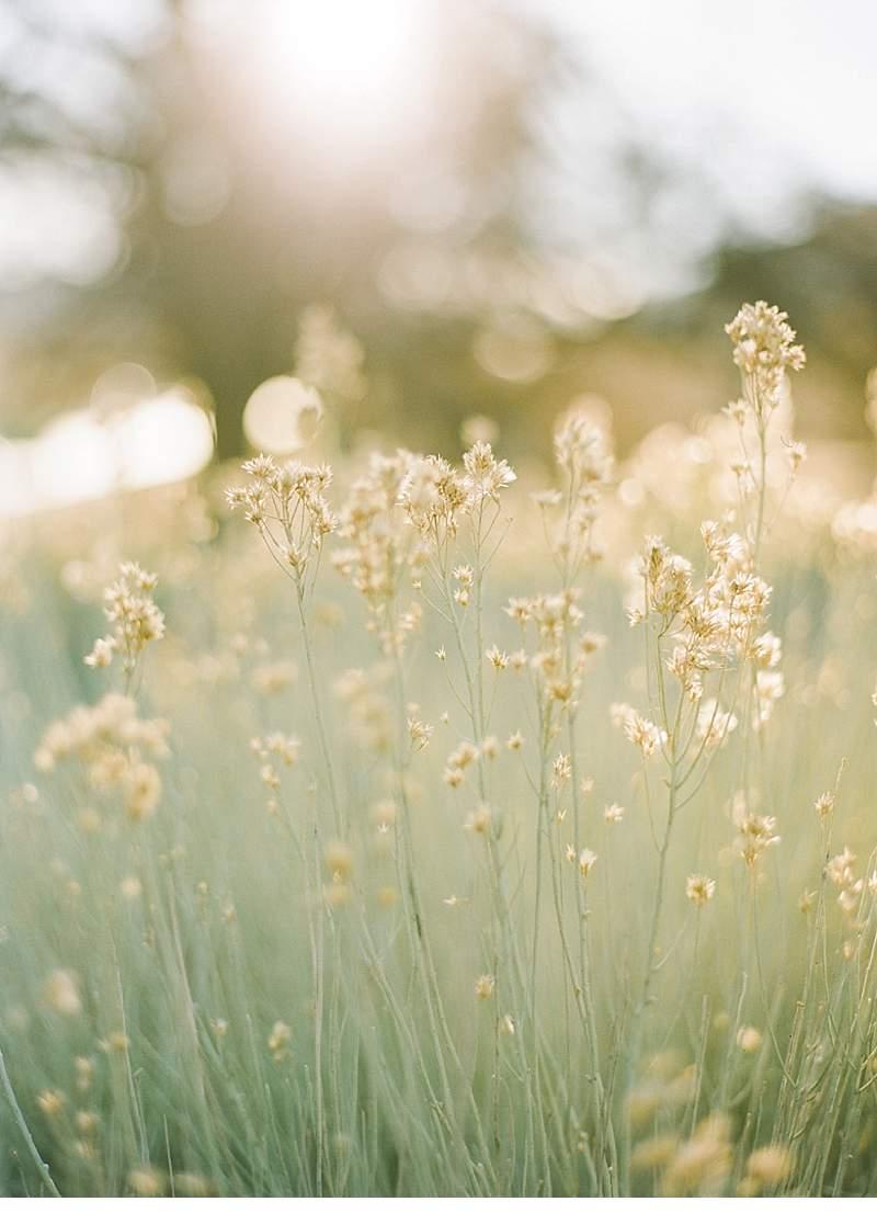california-ranch-burgundy-wedding-inspiration_0024