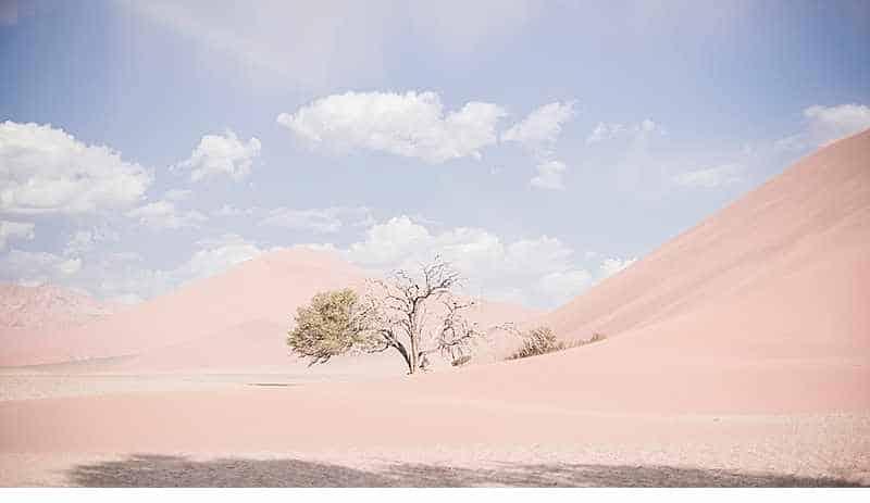 wuesten-braut-namibia-hochzeitsideen-destination-wedding_0016a