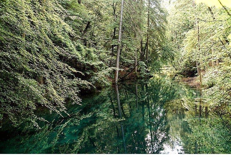 luxus-boho-hochzeits-inspirationen-wildpark_0020a